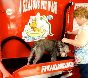 Pet wash brusters car wash in dayton and middletown 4 seasons pet wash solutioingenieria Image collections